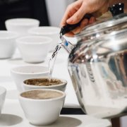 Specialty Coffee Festival