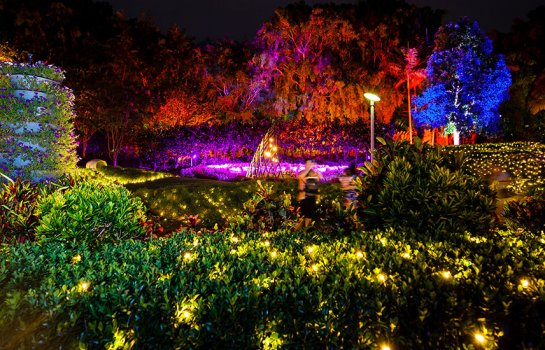 Miracle on Roma Street – the Enchanted Garden returns with a stunning light display