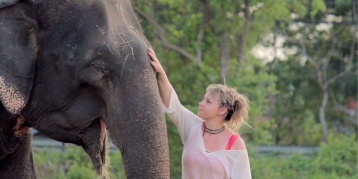 Through Elephant Eyes – documentary Kickstarter launch