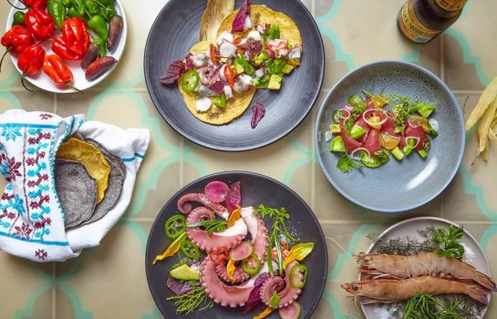 Tacos and tequila – Byron Bay's Chupacabra joins with Botero House to present A Taste of Mexico