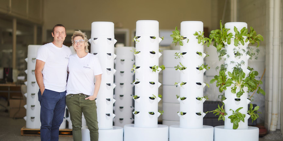 Grow your own produce (and a green thumb) with airgarden