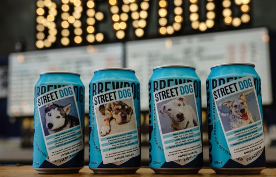 BrewDog's limited-edition Street Dog Punk IPA is helping save homeless Queensland dogs
