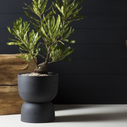 Pot your fancy plants in handcrafted pieces from Angus & Celeste