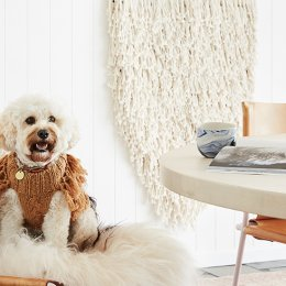 Keep your pooch snug as a bug in a sweater from Sebastian Says