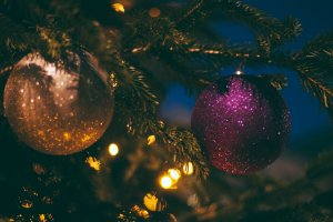 Carols in The Park – Labrador