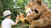 The Gruffalo Trail at Currumbin Wildlife Sanctuary